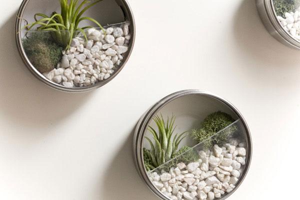 C mo hacer un jard n de aire en las paredes for Piedrecillas para jardin