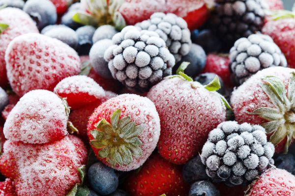 C mo congelar frutas - Se pueden congelar las almejas crudas ...