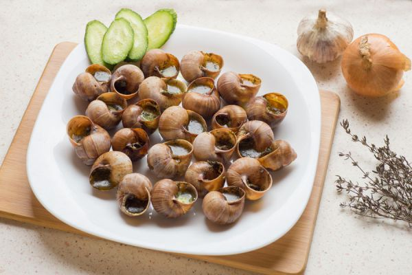 Cómo preparar los caracoles antes de cocinar. Procedimiento para limpiar y cocinar los caracoles.