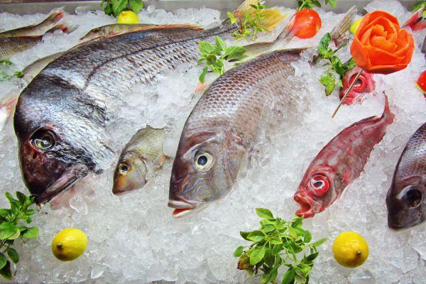Cómo comprar pescado congelado