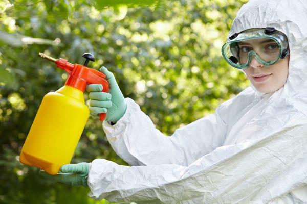 Recetas para hacer fertilizantes caseros. Cómo hacer insecticidas naturales para evitar las plagas del jardín.