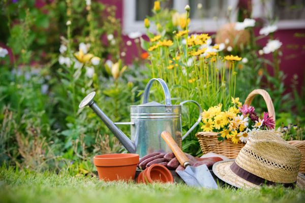 Consejos simples para mantener un jardín