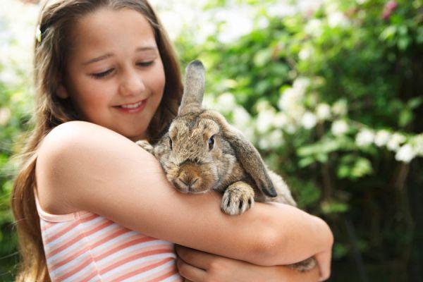 Cómo cuidar a un conejo de mascota. Consejos para cuidar a un conejo como mascota. Qué darle de comer a un conejo. Tips para cuidar a un conejo