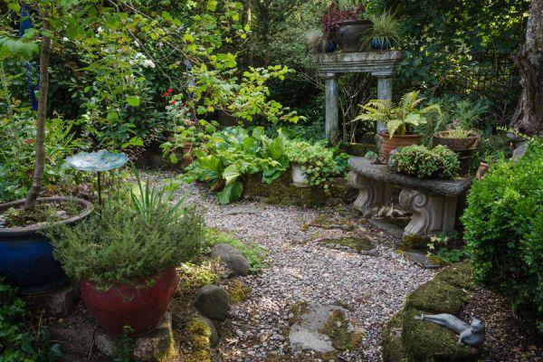 Como diseñar jardines con poco sol o secos. Plantas para jardines con poco sol y jardines con poca agua o secos. Diseña jardines con poco sol y agua