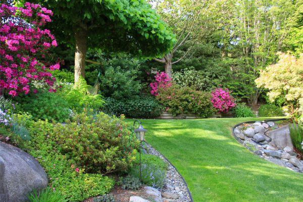 Plantas para dise ar jardines con mucha humedad for Disenar jardines