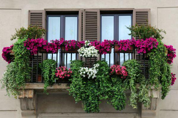 Cómo hacer un jardín en la terraza o balcón