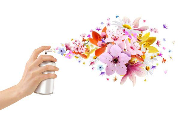 C mo eliminar malos olores en el hogar - Como eliminar los malos olores ...