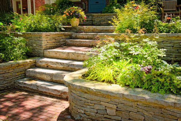 Cómo elegir la ubicación de las plantas según el sol y la humedad