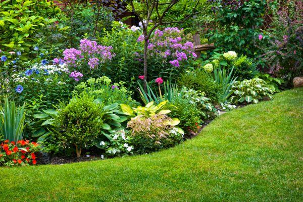 C mo dise ar un jard n que necesite poco mantenimiento - Mantenimiento de un jardin ...