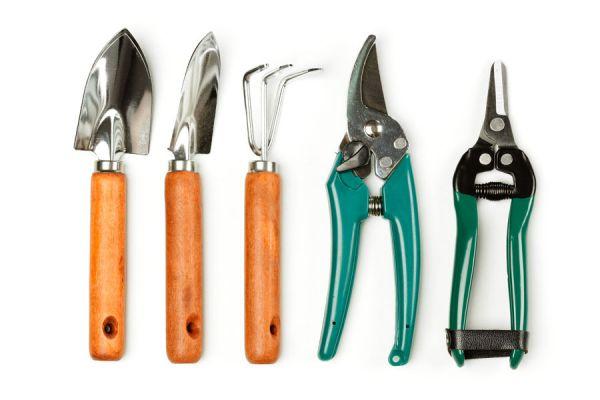 C mo cuidar las herramientas de jardiner a - Herramienta de jardineria ...