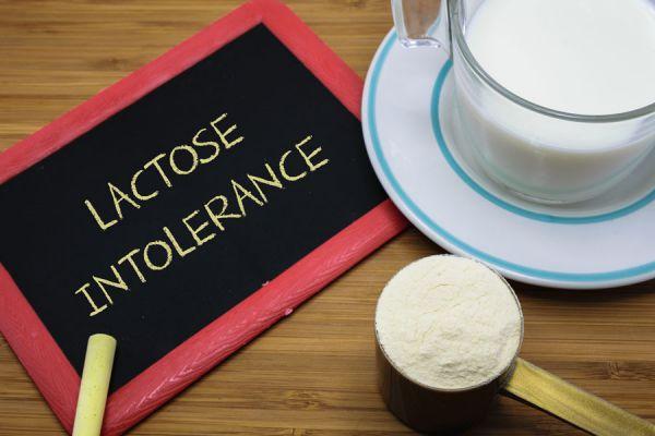 Alimentos alternativos para la intolerancia a la lactosa