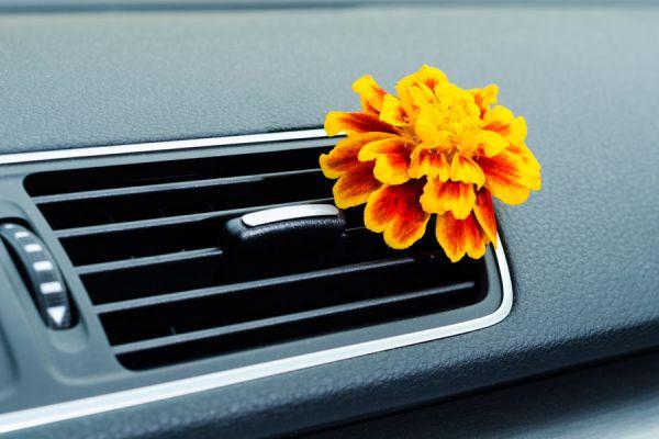Cómo hacer un aromatizador para el coche