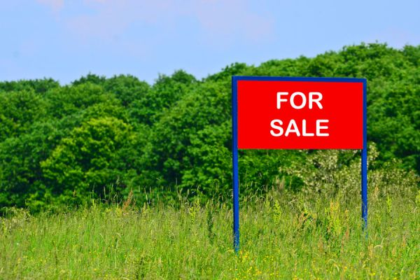 Guia para poner en venta un terreno. consejos para vender un terreno o lote baldío. Qué debes saber antes de vender un terreno.