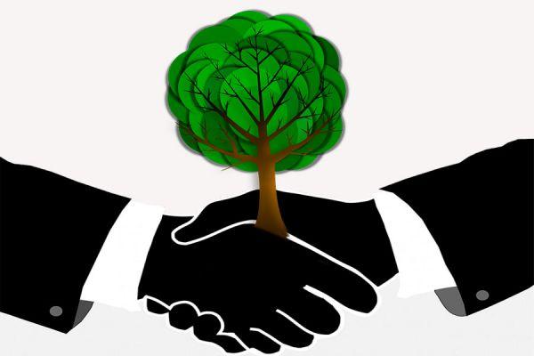 Consejos para ser un emprendedor ecológico. Como tener un emprendimiento ecológico. Tips para ser un emprendedor verde o ecológico