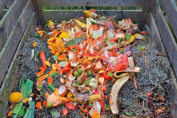 Guía para hacer fertilizante natural y casero. Cómo elaborar compost casero. Tips para preparar un fertilizante natural con distintos nutrientes
