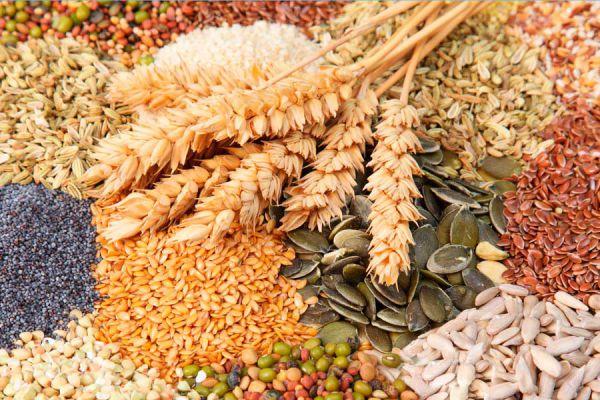 Semillas ideales para utilizar en la cocina. Qué semillas son nutritivas para cocinar? 6 semillas saludables y nutritivas