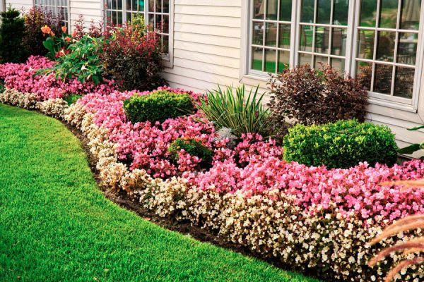 Tips para evitar que las malas hierbas invadan los canteros. Cómo prevenir que le jardín se llene de malas hierbas.