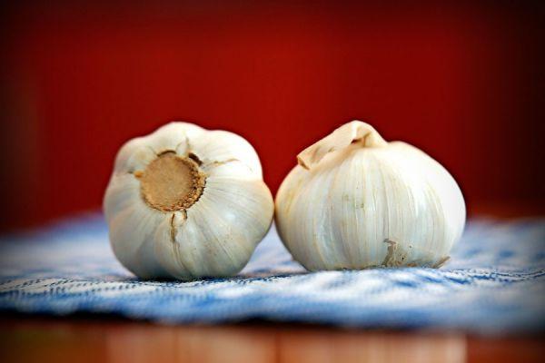 Métodos para conservar el ajo. 3 formas simples de conservar ajos: Ajo deshidratado, congelado y en pickle. Guía para guardar los ajos