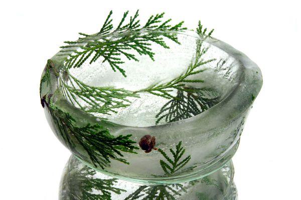 Guía para hacer platos de hielo. Cómo crear recipientes de hielo para servir las comidas. Originales platos de hielo para servir comidas