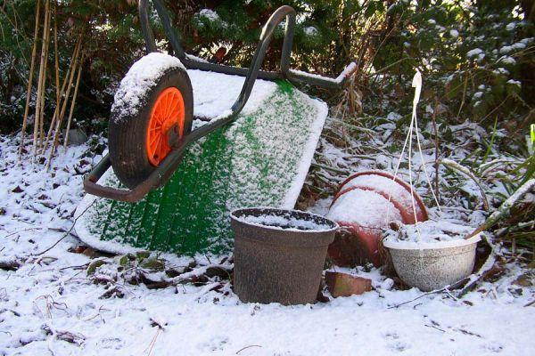 Guía para cultivar vegetales en invierno. Cómo preparar la huerta en invierno. Qué se puede sembrar durante el invierno?
