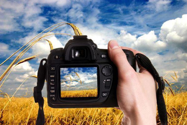 Reglas de fotografía para capturar mejores imágenes. cómo tomar mejores fotos. Guía para sacar mejores fotografias.