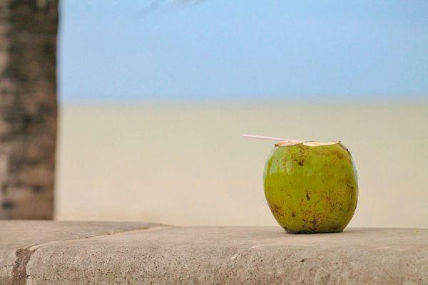 Cómo obtener aceite de coco natural. Tips para extraer aceite de coco en casa. Beneficios del aceite de coco natural y casero