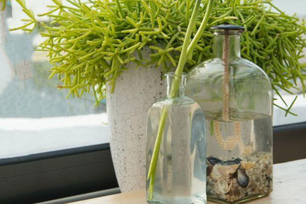 Pasos para hacer una lámpara de aceite casera. Crea una lámpara aromática con aceite de cocina.