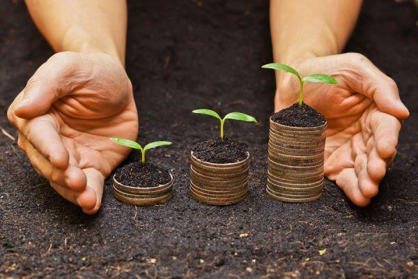 Claves de la responsabilidad social empresaria. Lo mejor de trabajar en una empresa generosa. Tips para crear responsabilidad empresaria
