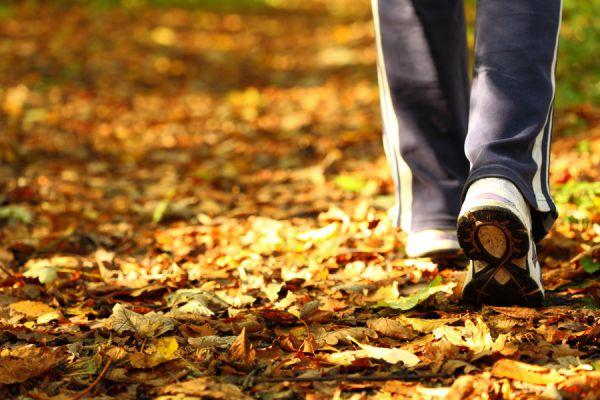 Cómo tener una mejor salud. 4 hábitos simples para mejorar al salud. Consejos para mejorar la salud física