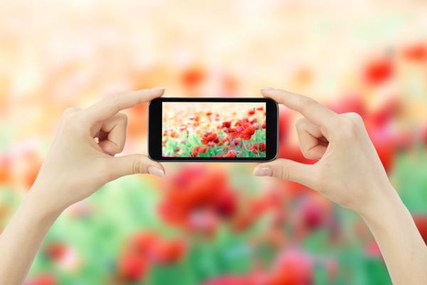 Consejos para sacar mejores fotos con el móvil. Cómo tomar buenas fotografías con la cámara del móvil. Trucos para sacar mejores fotos con el celular
