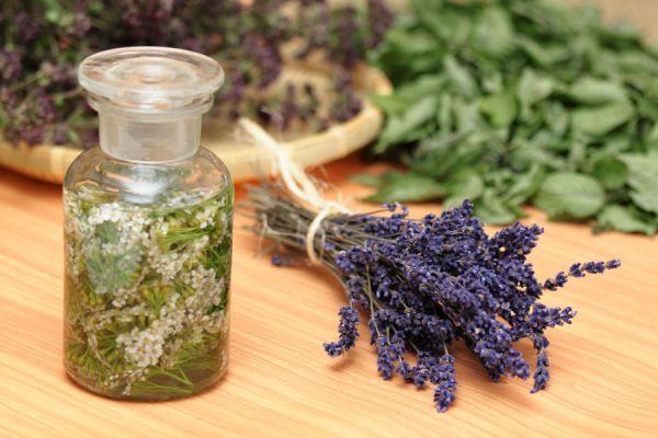 Como hacer rituales con hierbas para combatir malas energias. 3 hechizos con hierbas fáciles y eficaces. Guía para hacer hechizos con hierbas