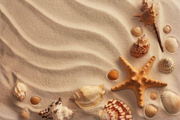 Pasos para crear un adorno con arena. Guía para crear adornos con arena. Qué hacer con la arena de playa?