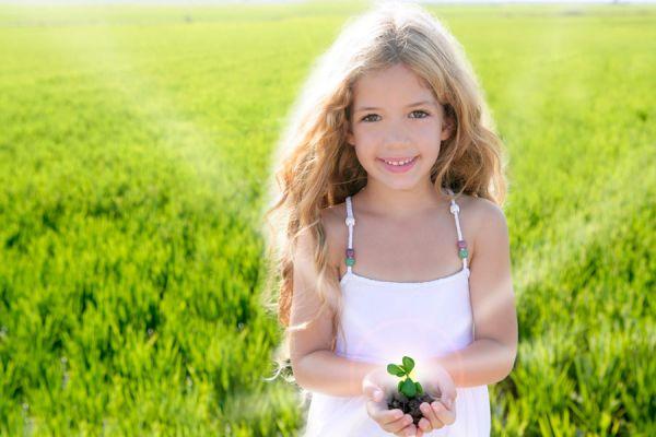 Tips para elegir plantas que atraen buenas energías. Las mejores plantas para atraer energías positivas a los ambientes de casa.