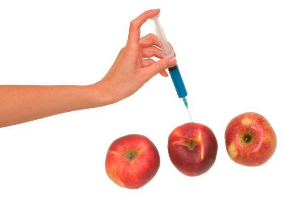 Componentes de las comidas que debes evitar. Cómo reconocer los aditivos dañinos en las comidas. Lista de aditivos en las comidas que es mejor evitar