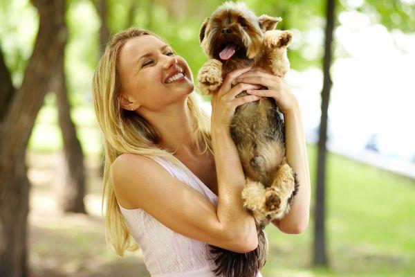 Cómo educar al perro para que deje de ladrar. Cómo evitar los ladridos de un perro. Claves para enseñarle al perro a que deje de ladrar