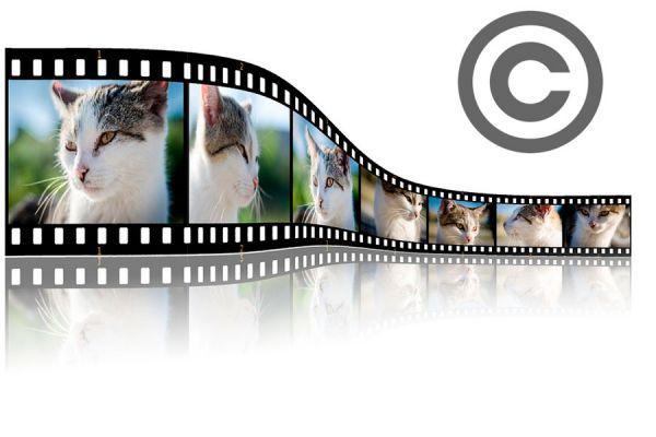 Cómo poner derechos de autor en tus fotos. Programas para colocar copyright a tus fotos. Cómo proteger con copyright tus fotografías