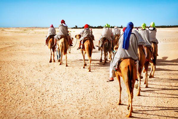 Cómo sobrevivir en un desierto. Consejos para hacer un viaje al desierto. Guía para viajar al desierto