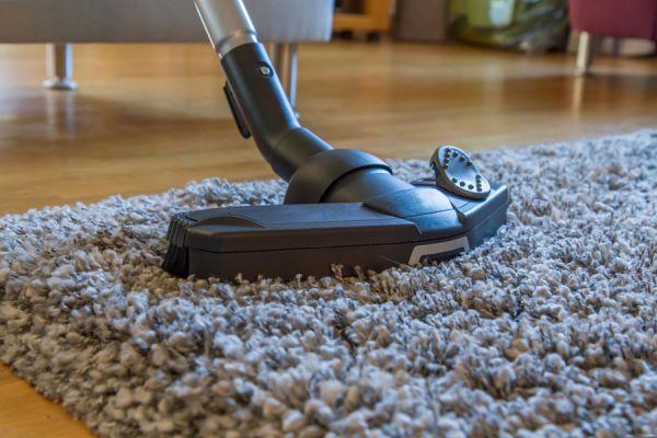 Cómo evitar las pestes en el hogar. Métodos para prevenir hormigas, roedores y otras pestes. Guía para mantener un hogar libre de pestes