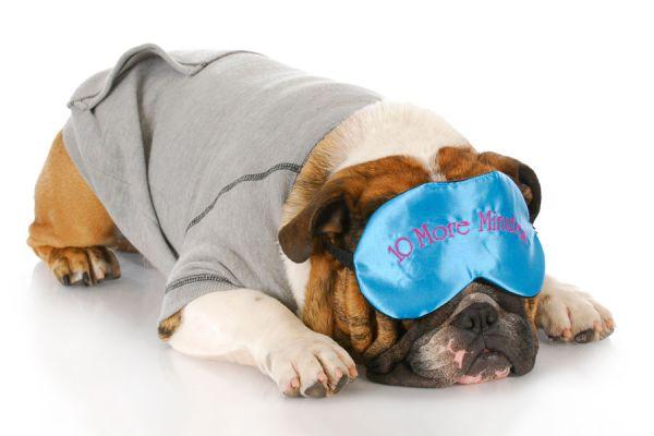 Los beneficios de dormir más tiempo. Ventajas de dormir más. Beneficios de descansar de 8 horas. Señales de haber dormido poco