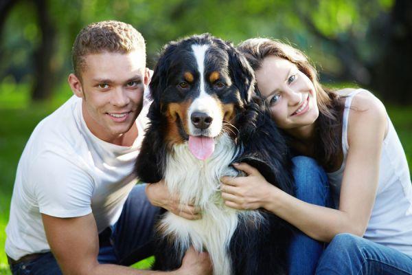 Cómo adoptar un gato en pareja. Consejos para el cuidado de un perro o gato en pareja. Claves para adoptar un animal con tu pareja