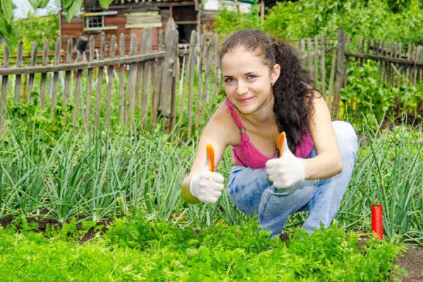 Trucos de jardinería para embellecer el patio. 3 pasos simples para mejorar tu jardín. Guía para mejorar el jardín en 3 pasos simples