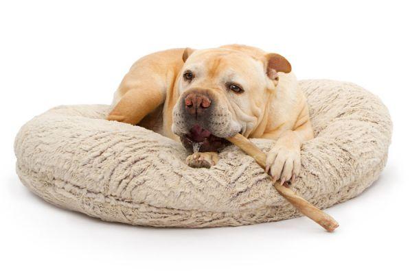 Cómo hacer una cama para mascotas con una sudadera vieja. Pasos para crear una cama reciclada para tu perro o gato. Reutilizar una vieja sudadera