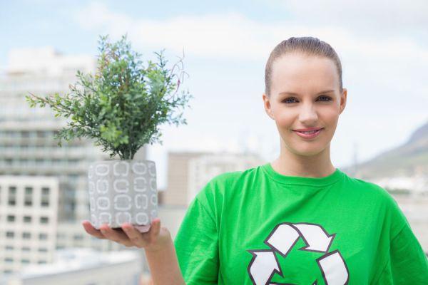 Plantas para purificar el aire de los ambientes. Cómo elegir plantas para limpiar el aire del hogar. Especies de plantas para limpiar el aire de casa
