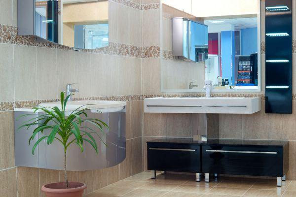 6 plantas ideales para colocar en el sanitario. Plantas para decorar el sanitario y lavadero. Qué plantas escoger para decorar un sanitario