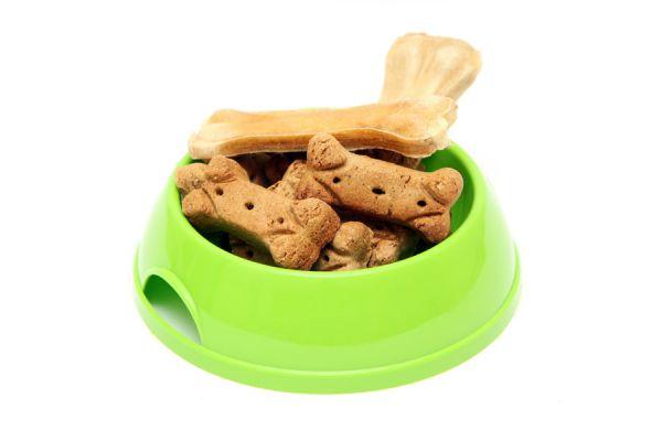 Cómo preparar comidas para perros. Recetas caseras de comidas para perros. Cómo preparar recetas caseras para perros
