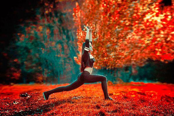 3 posturas de yoga para tonificar el cuerpo. Asanas de yoga para fortalecer el cuerpo entero. Pasos para fortalecer el cuerpo con asanas de yoga