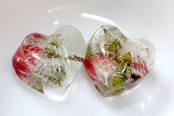 Método para conservar flores en resina. Cómo conservar objetos en resina. Técnica para conservar flores en resina