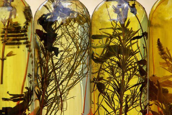 Ideas para saborizar aceites. Cómo darle sabor a los aceites. Ingredientes para hacer aceites saborizados caseros