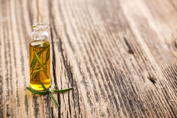 Beneficios de la planta de romero. Propiedades medicinales del romero. Usos del romero en la cocina y la salud.