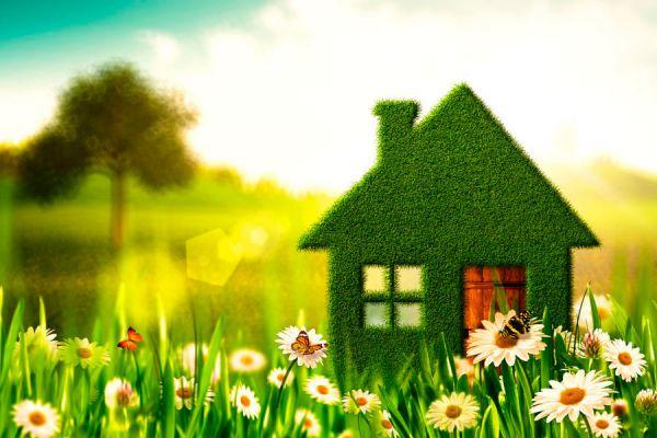 Productos para limpiar la casa sin químicos. Ingredientes naturales para hacer limpiadores caseros. Recetas caseras para hacer limpiadores